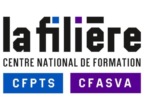 CFPTS : la formation « Technicien Vidéo, diffusion d'images pour l'évènementiel et le spectacle » démarrera le 12 novembre.
